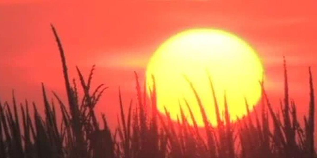 Health Experts Give Tips On How To Keep Elderly Safe During Summer Heat