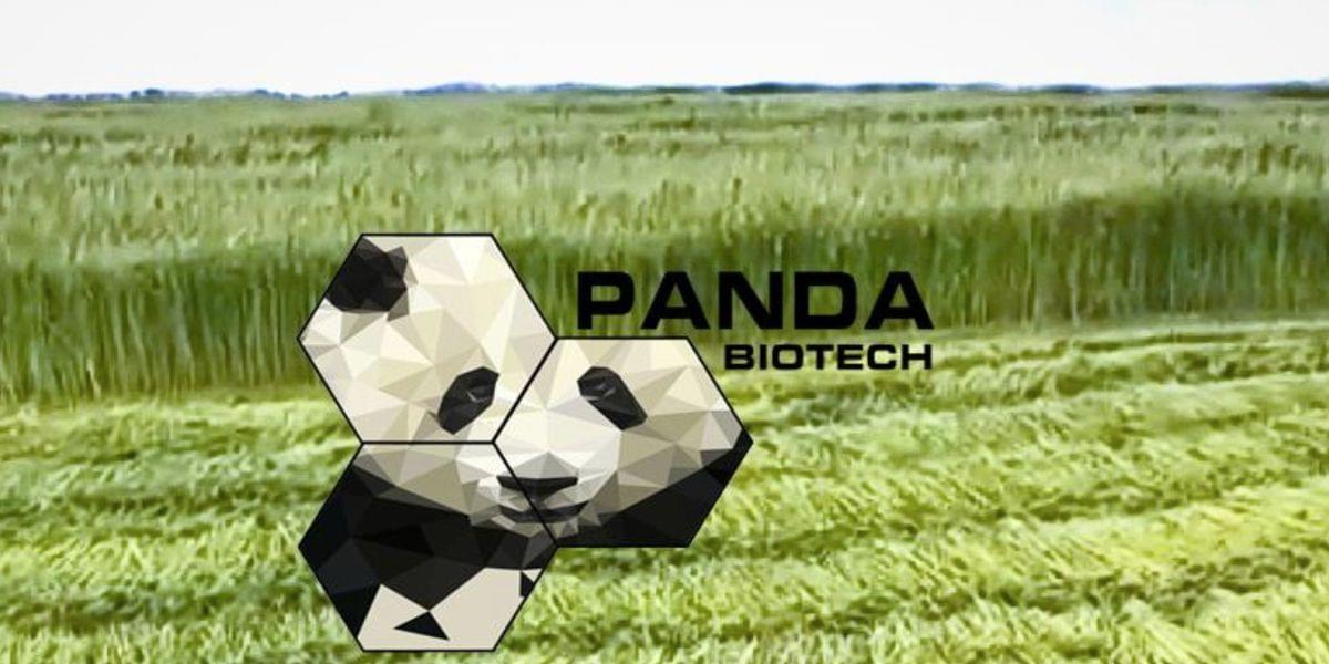 Panda Biotech Chooses Wichita Falls For Hemp Processing Facility
