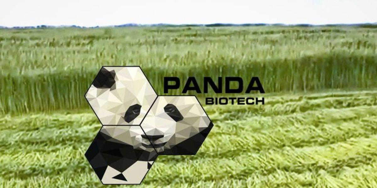 Panda Biotech Chooses Wichita Falls For Hemp Processing Facility