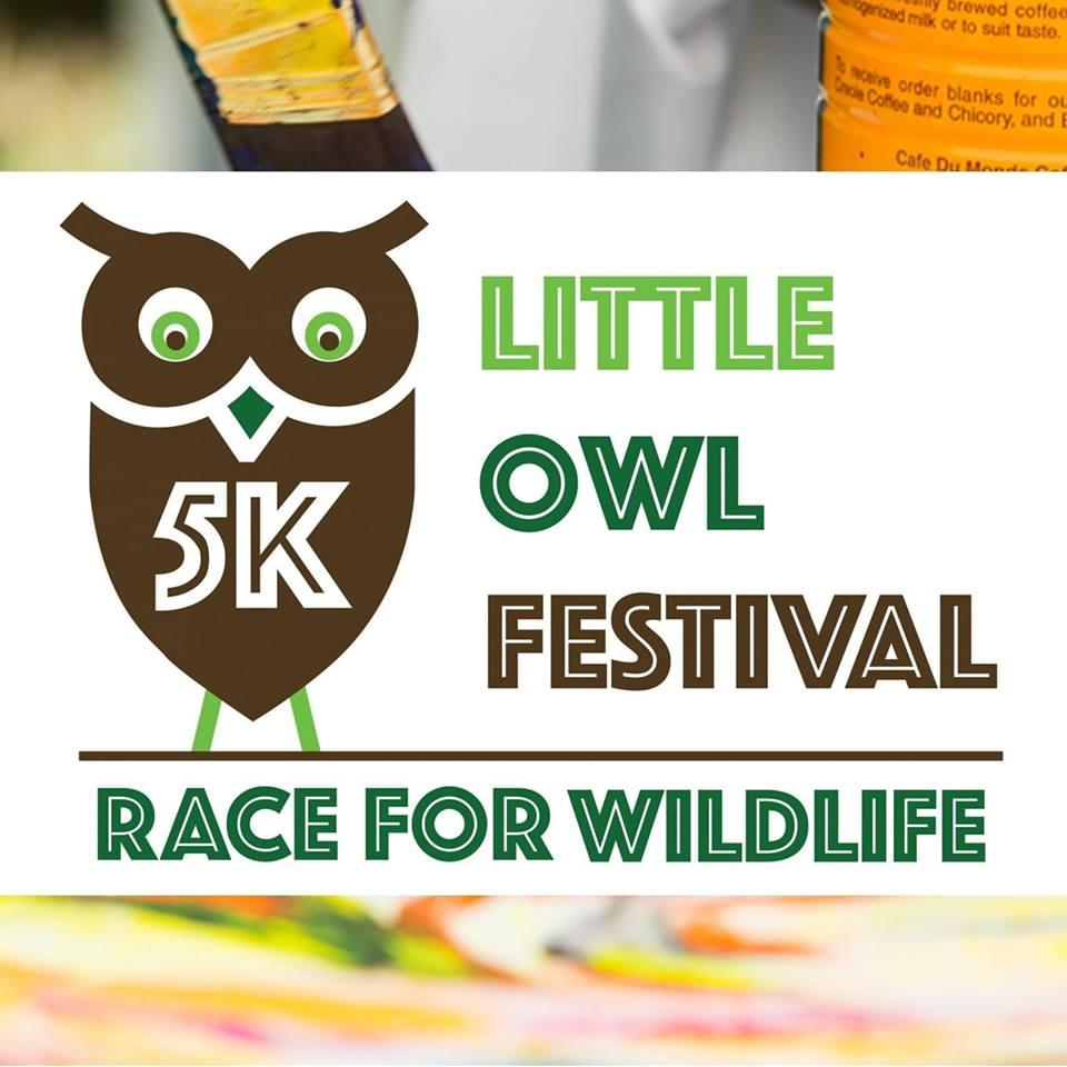 Little Owl Festival, May 19th