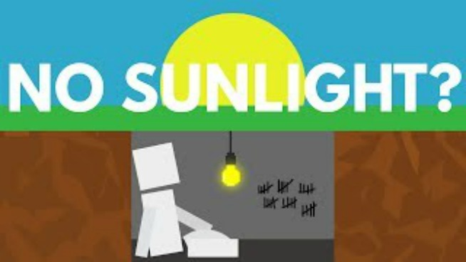 VIDEO: What Would Happen If You Never Saw The Sun?