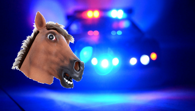 Man Given DUI on L.A. Freeway….While Riding A Horse