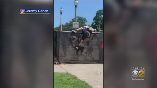 Watch Lollapalooza fence-jumpers fail big time