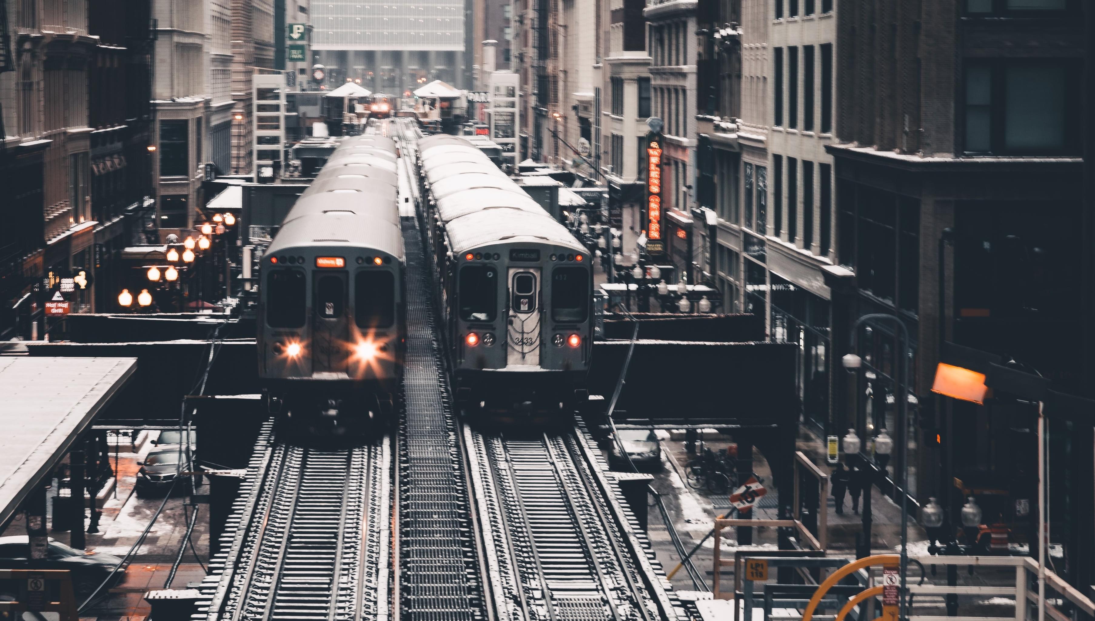 CTA suspends bus and train service