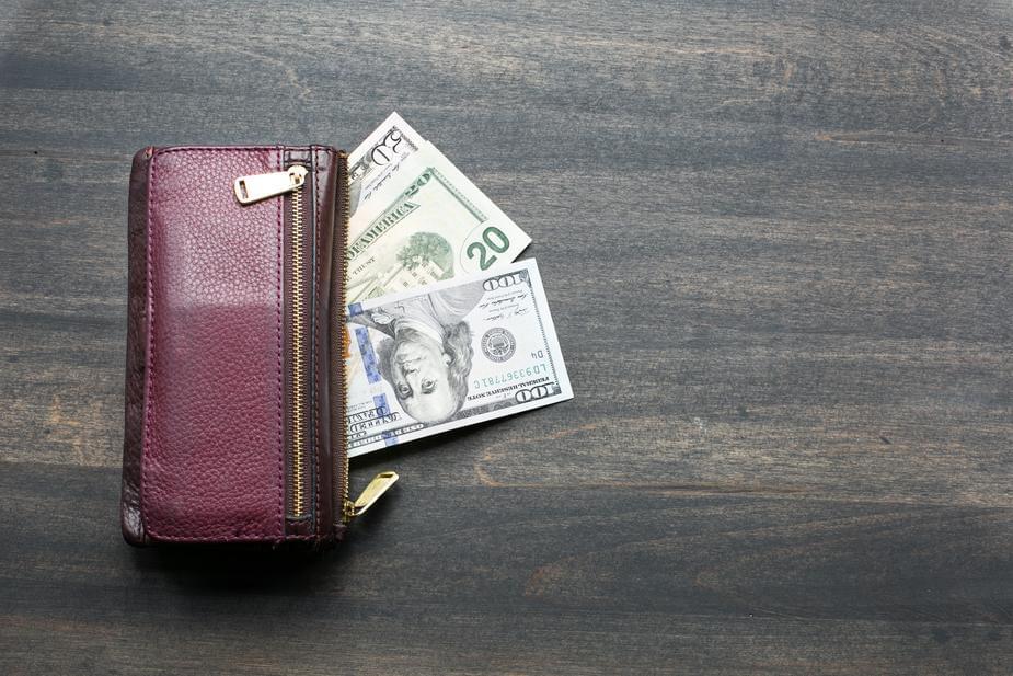 Fox steals man's wallet!