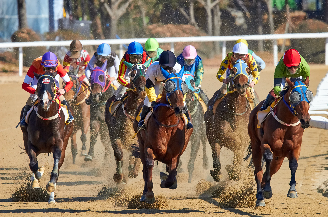 Kentucky Derby 2020: Yell these horse names at a screen today