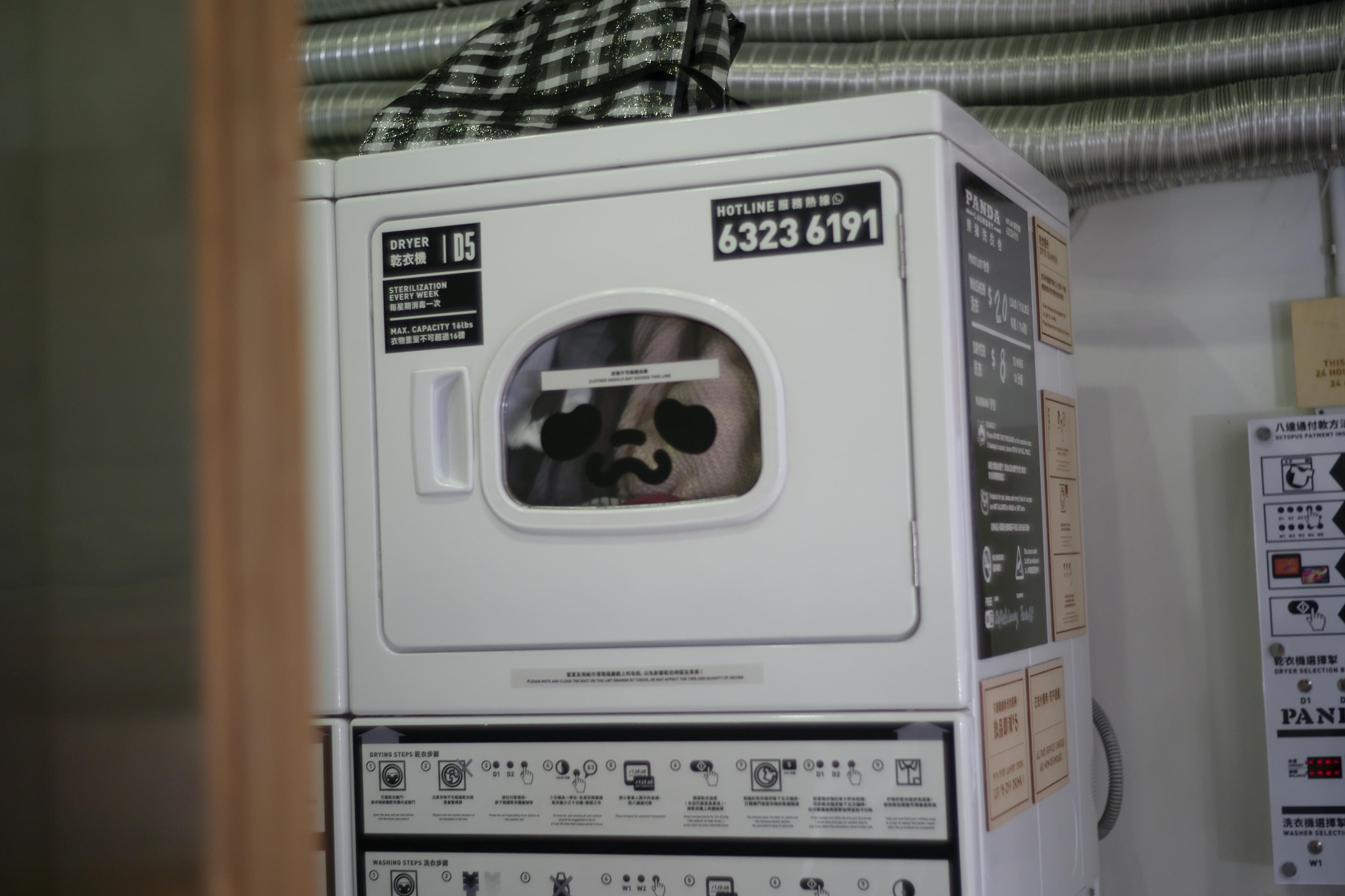 Laugh at this girl who got stuck in a dryer!