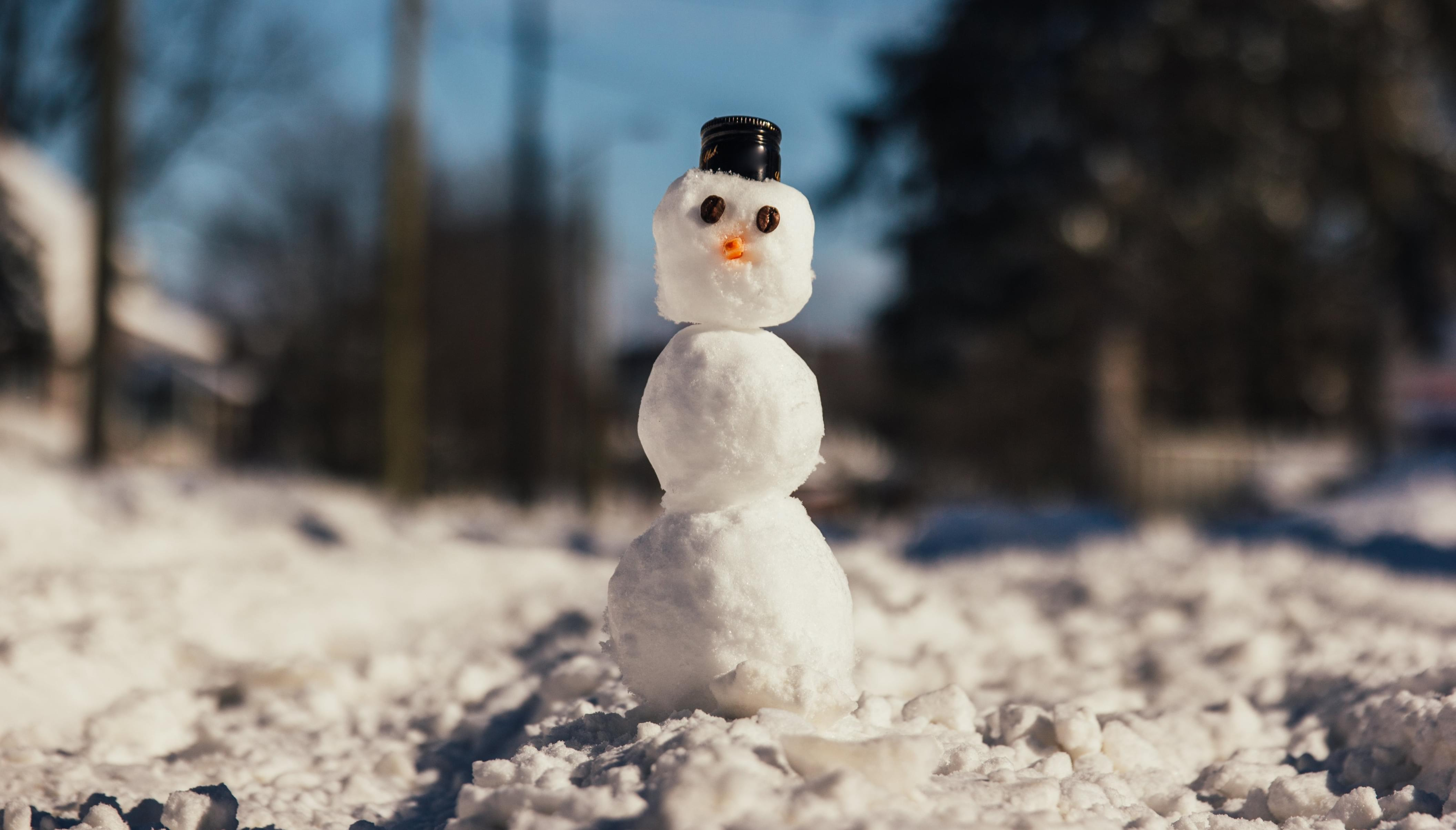 Town Gets Off on Creating NSFW Snowmen
