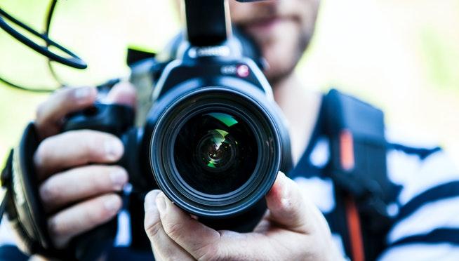 TV news reporter finds, saves stolen dog on camera