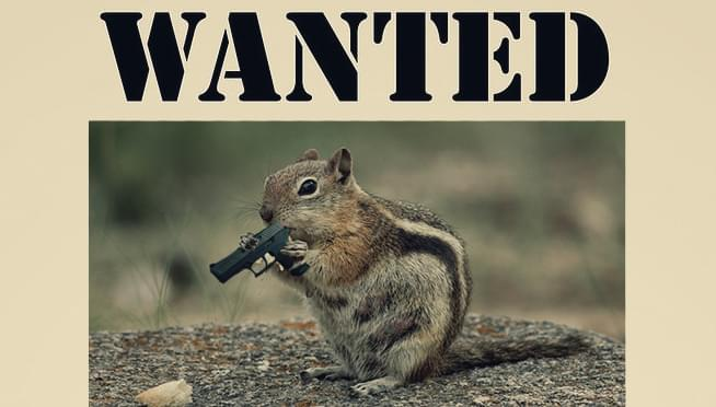 Police are on the lookout for an armed chipmunk that robbed a pharmacy