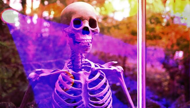 HOA vs Halloween – Woman is being forced to take down pole dancing skeleton decorations