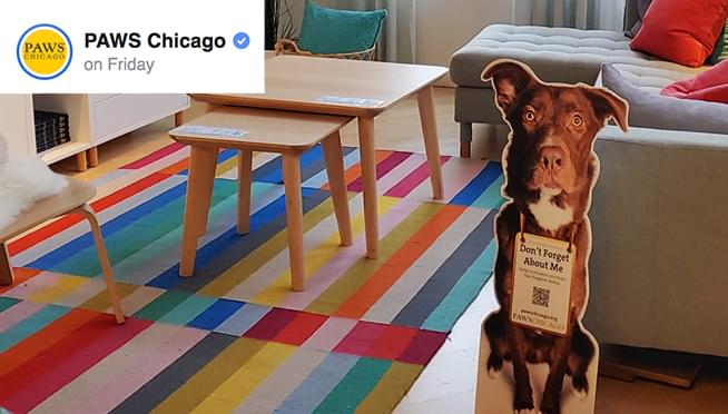 PAWS Chicago and IKEA team up to get pets adopted by adding dog and cat cut outs to room displays