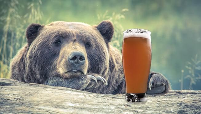 Lincoln Park Zoo hosting 'Beers & Bears' to welcome bears out of hibernation… WITH BEERS