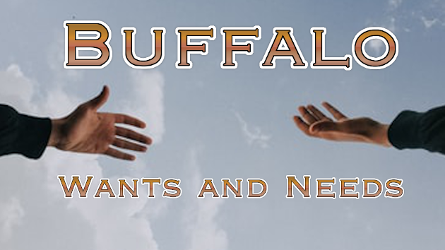 Buffalo Wants and Needs