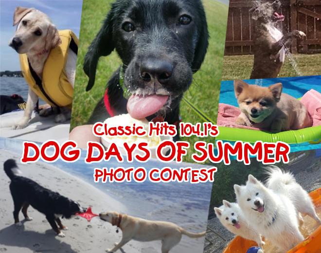 2017 Dog Days of Summer Photo Contest
