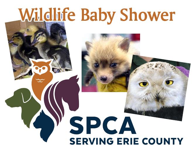 SPCA Wildlife Baby Shower