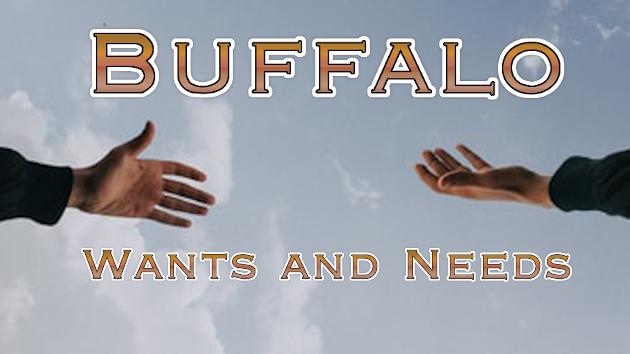 Buffalo Wants and Needs