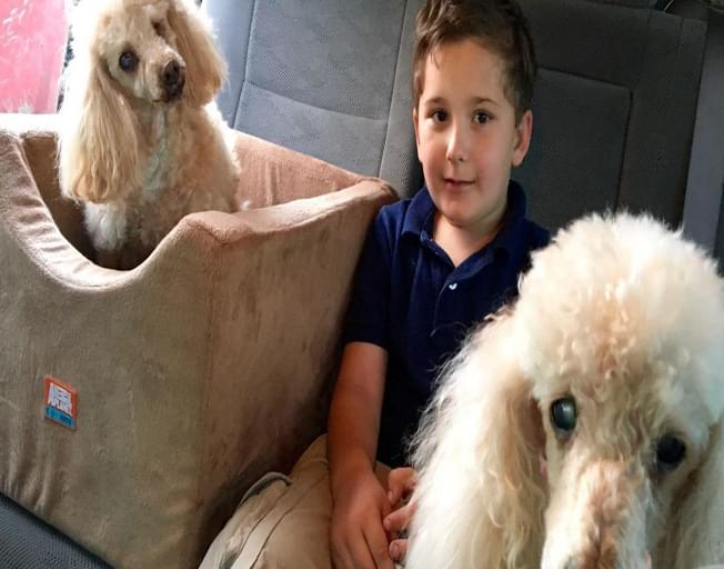 "Adopted Boy on Mission To Save Senior Dogs: ""I Know How It Feels To Not Be Loved"""