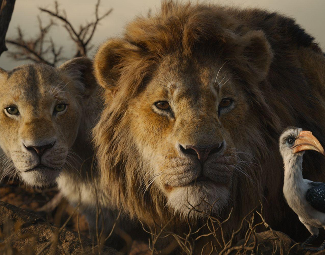 'The Lion King' Sequel Is Happening