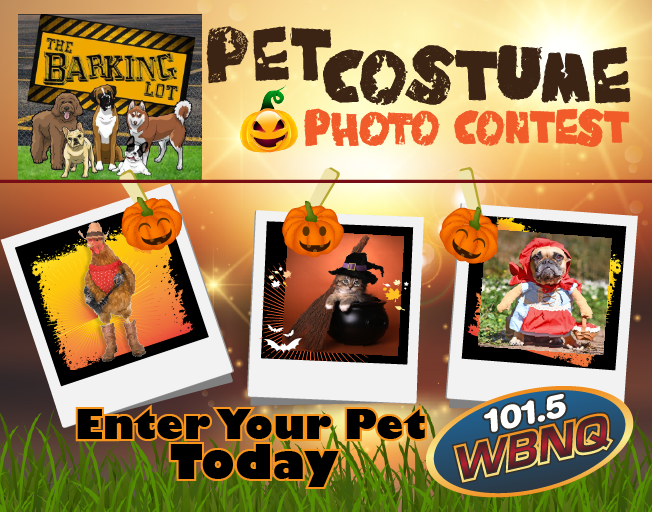 Pet Costume Contest with The Barking Lot