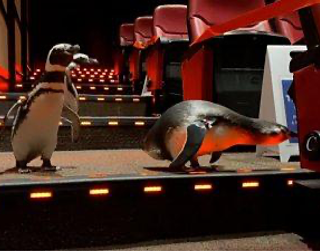 Penguins Go On Field Trip To The Movies