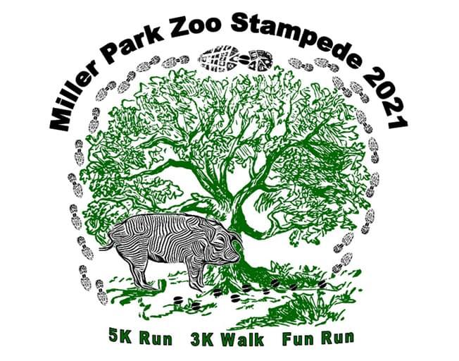 Miller Park Zoo Stampede