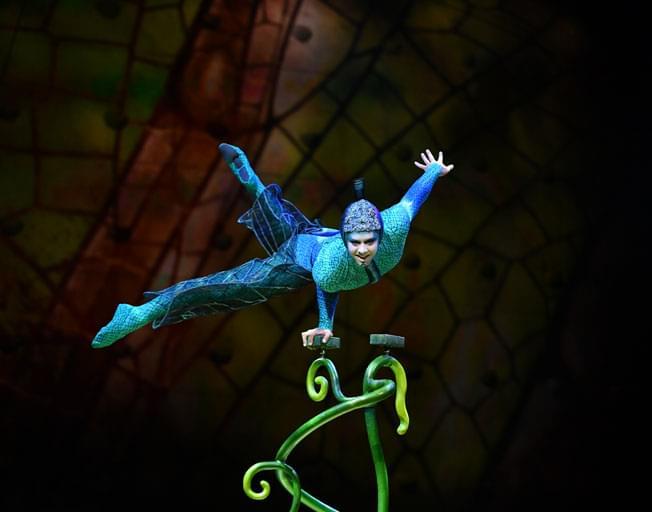 Win Cirque du Soleil OVO Tickets with Timeline on B104