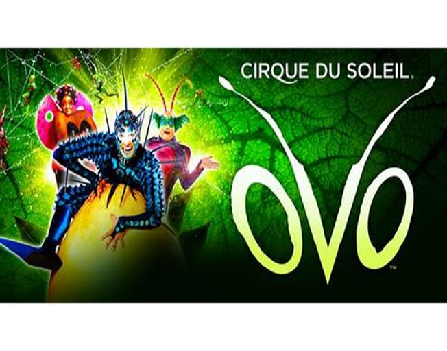 Win Tickets To Circue Du Soleil At Grossinger Motors Arena