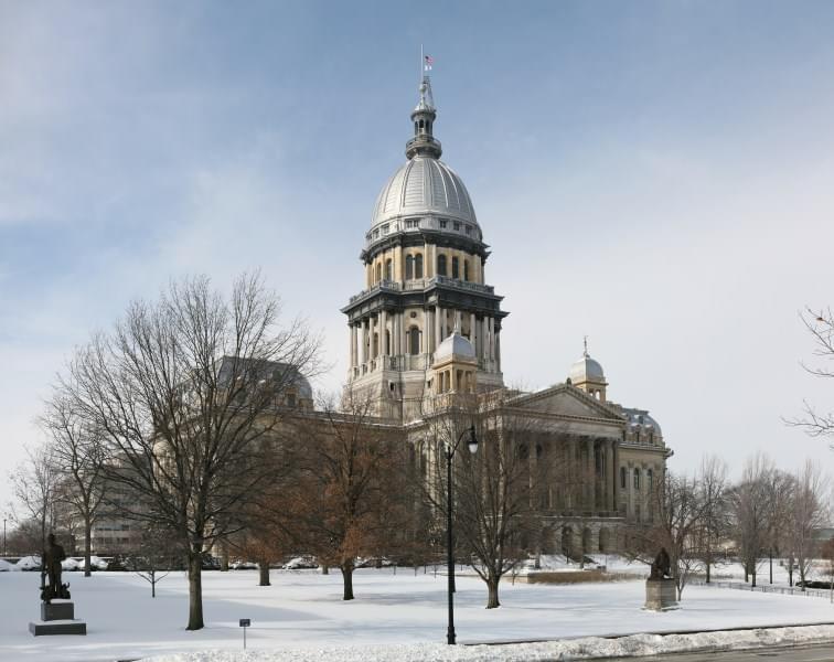 Illinois Ag Director Steps Down