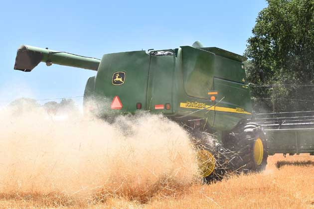 State's corn and soybean harvests roughly halfway complete