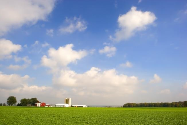 This week's USDA crop report is a wet one