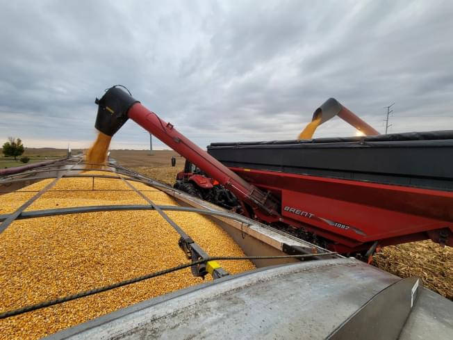 USDA releases final yield report for Illinois agriculture
