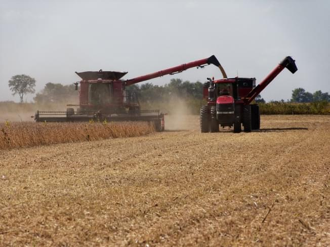 ISA CEO: Was a good year for farmers