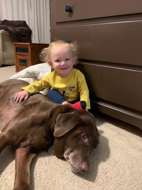 A LITTLE BOY AND AN OLD DOG …