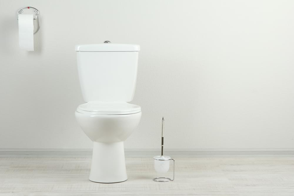 1 In 6 People Have Done A Zoom Meeting From The Toilet