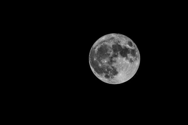 full moon, November 14, 2016