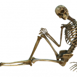 2 Year Old Boy Refuses To Do Anything Without His Best Friend: A 5 Foot Skeleton?!