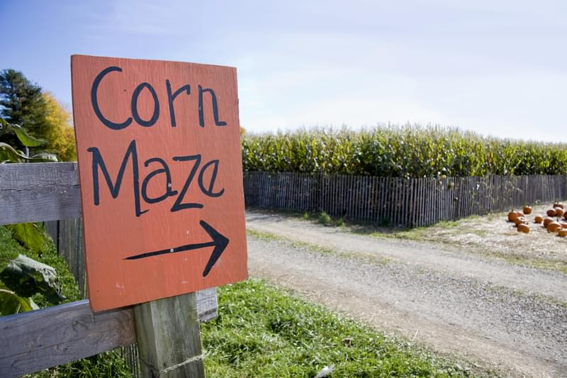 USA Today Names Two Indiana Corn Mazes Best In The Nation