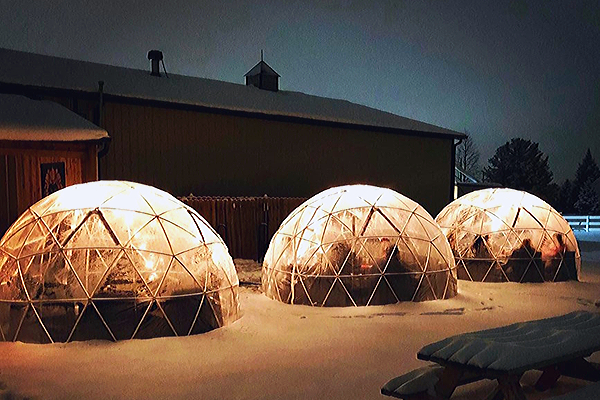 Urban Vines Is Bringing Back Their Heated Igloos Next Month