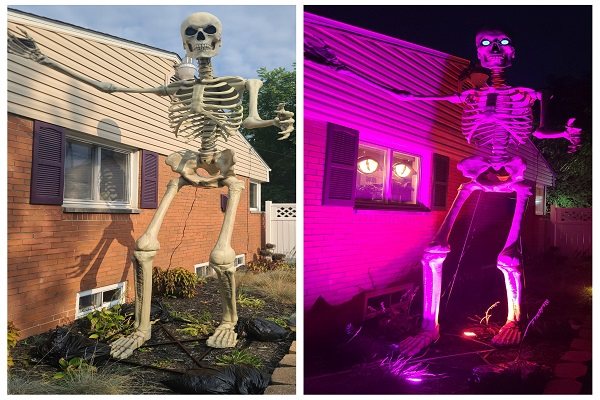 Put Up A Giant Skeleton..Anyone Else Get Into Halloween Decor?