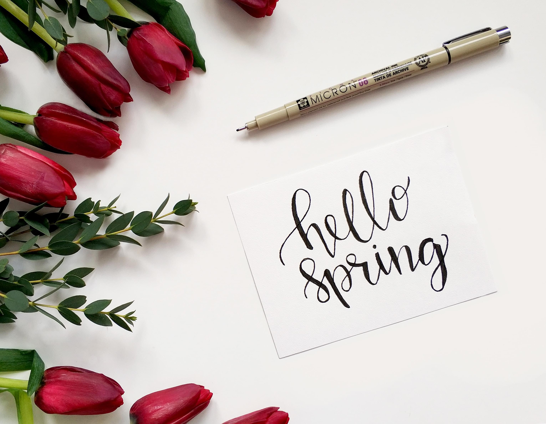 NASH Nine: Have a fun weekend every weekend this Spring
