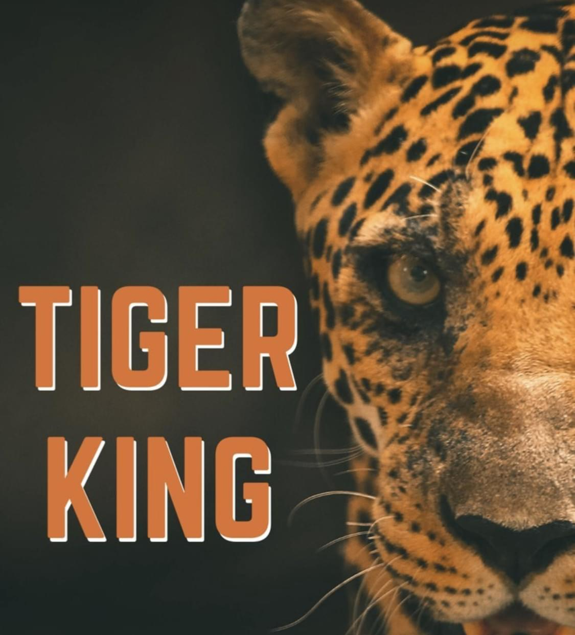 New Tiger King