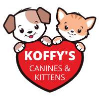 Koffy's Canines & Kittens