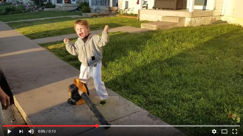 Leaf Blower Kid