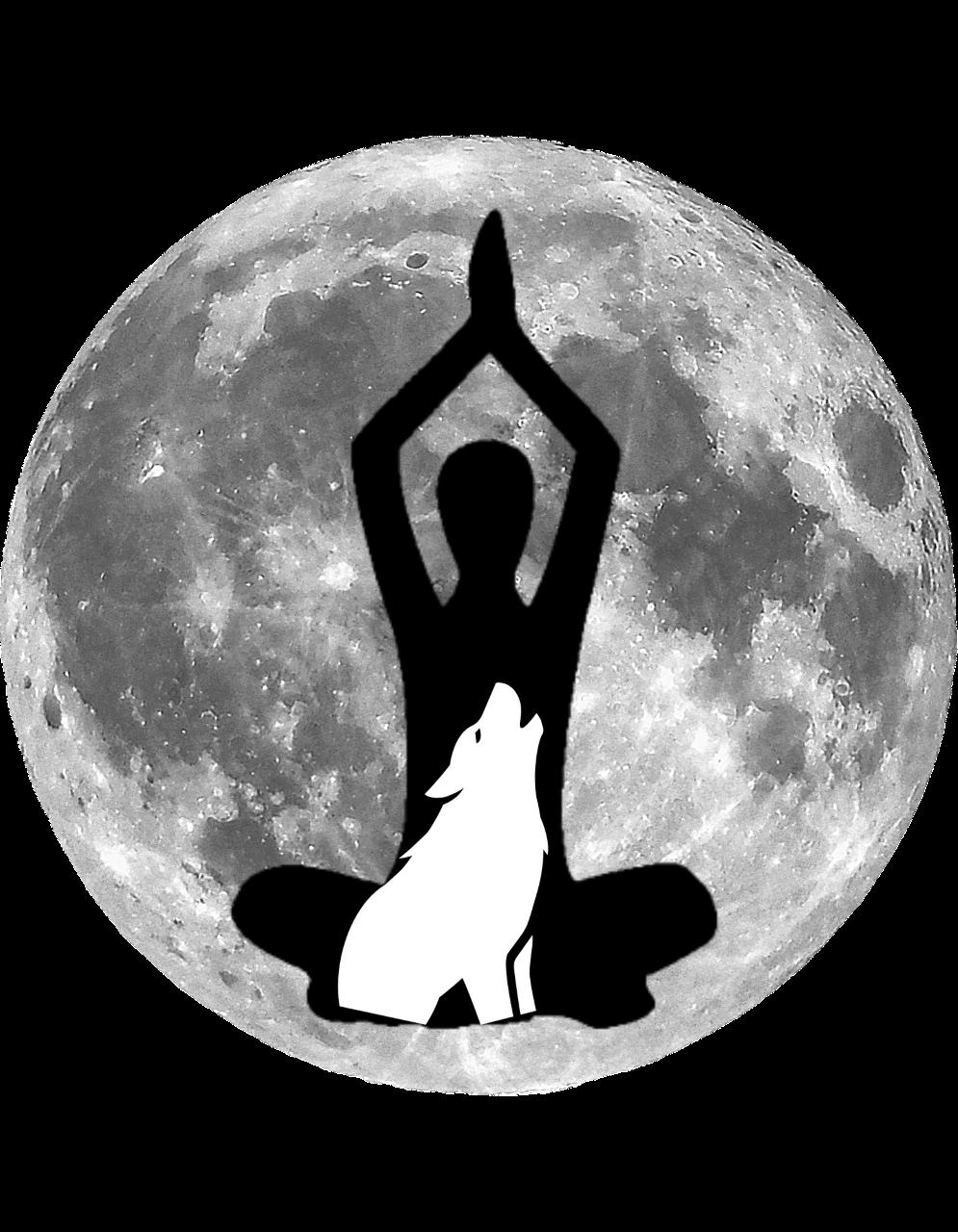 Full Moon Flow-Fest: Presented by Powerglow Yoga