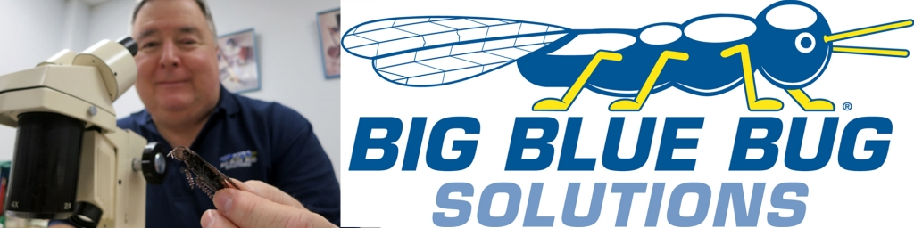bbb solutions cover