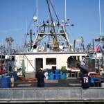 Mass. urges fishing industry to apply for $24M in virus aid