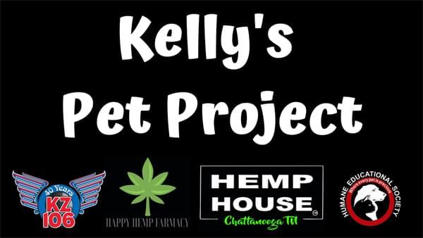 Kelly's Pet Project 10/3: Herman