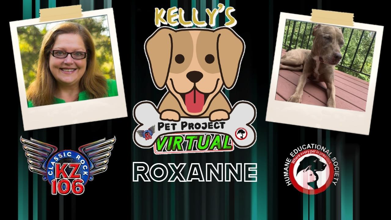 Kelly's Virtual Pet Project: Roxanne