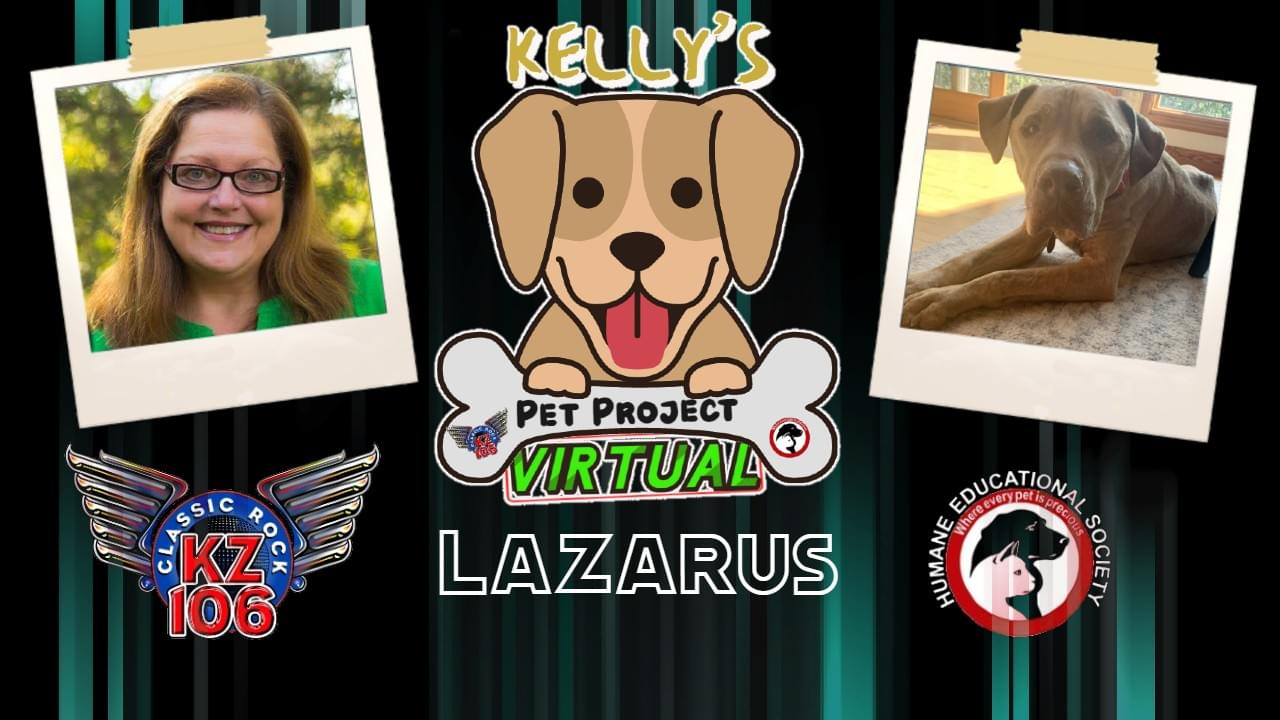 KELLY'S PET PROJECT: LAZARUS